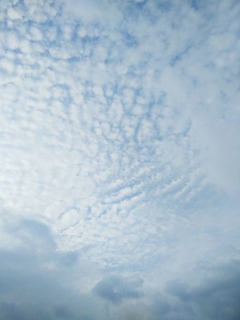 cloud - sky, sky, low angle view, nature, beauty in nature, tranquility, cloudscape, sky only, no people, scenics, backgrounds, tranquil scene, full frame, outdoors, day, blue