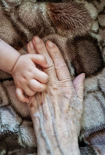 Human Body Part Human Hand People Phone Photography Hands Fragility PhonePhotography Babyhand Oldwoman Purity In Soul OldNew Oldness Skin Drama Shot  Capture The Moment EyeEmNewHere Bonding Close-up Togetherness Two People Real People Neon Life Rethink Things