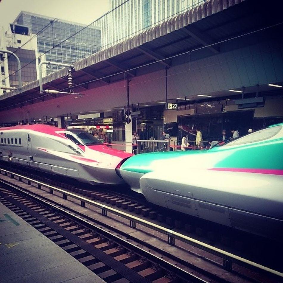 いつ見ても E5 と E6 の連結は美しい( ☆∀☆) Shinkansen E5 E6