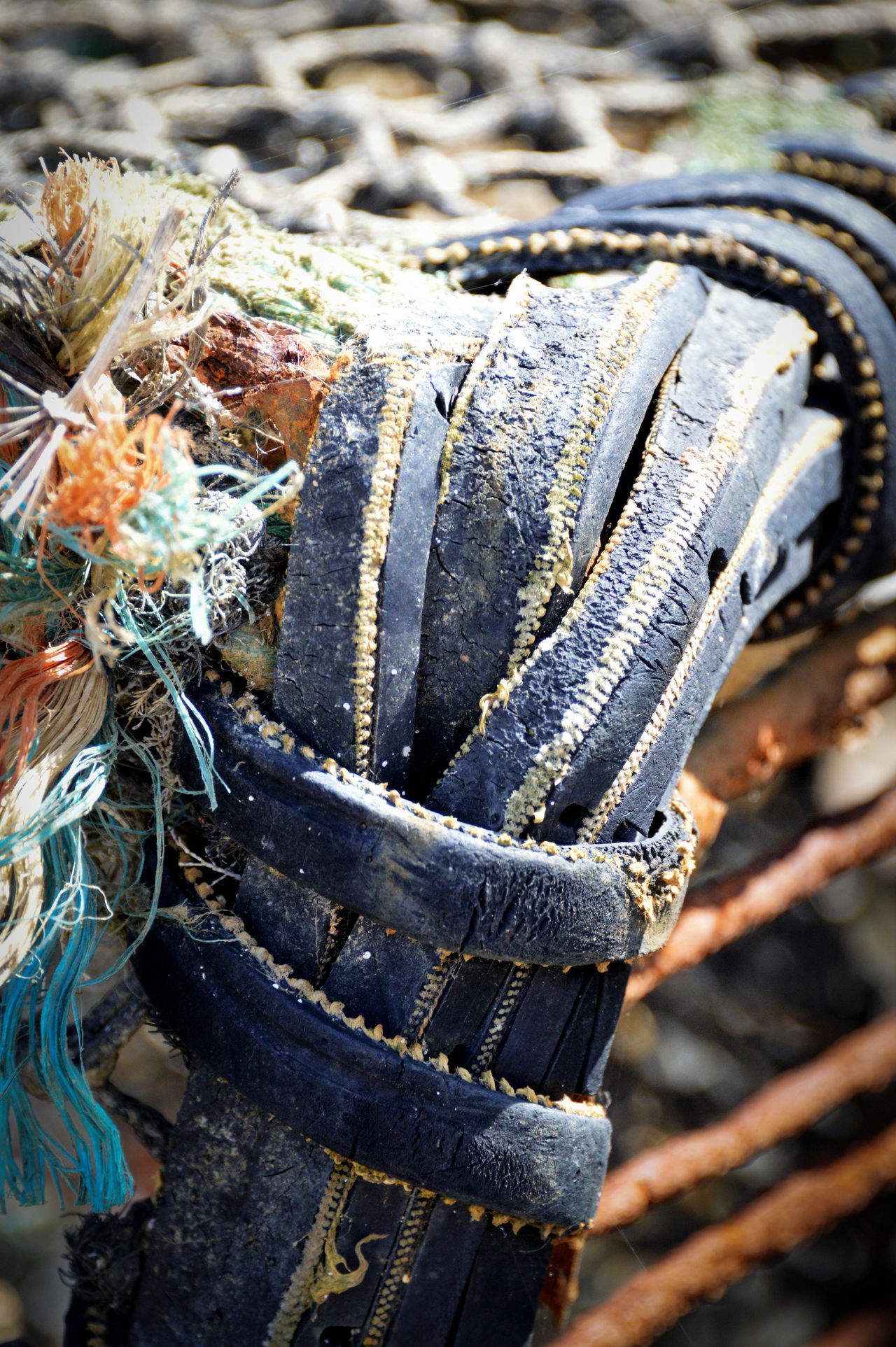 Close-up Day Nature Nautical Equipment Netting No People Outdoors Rope
