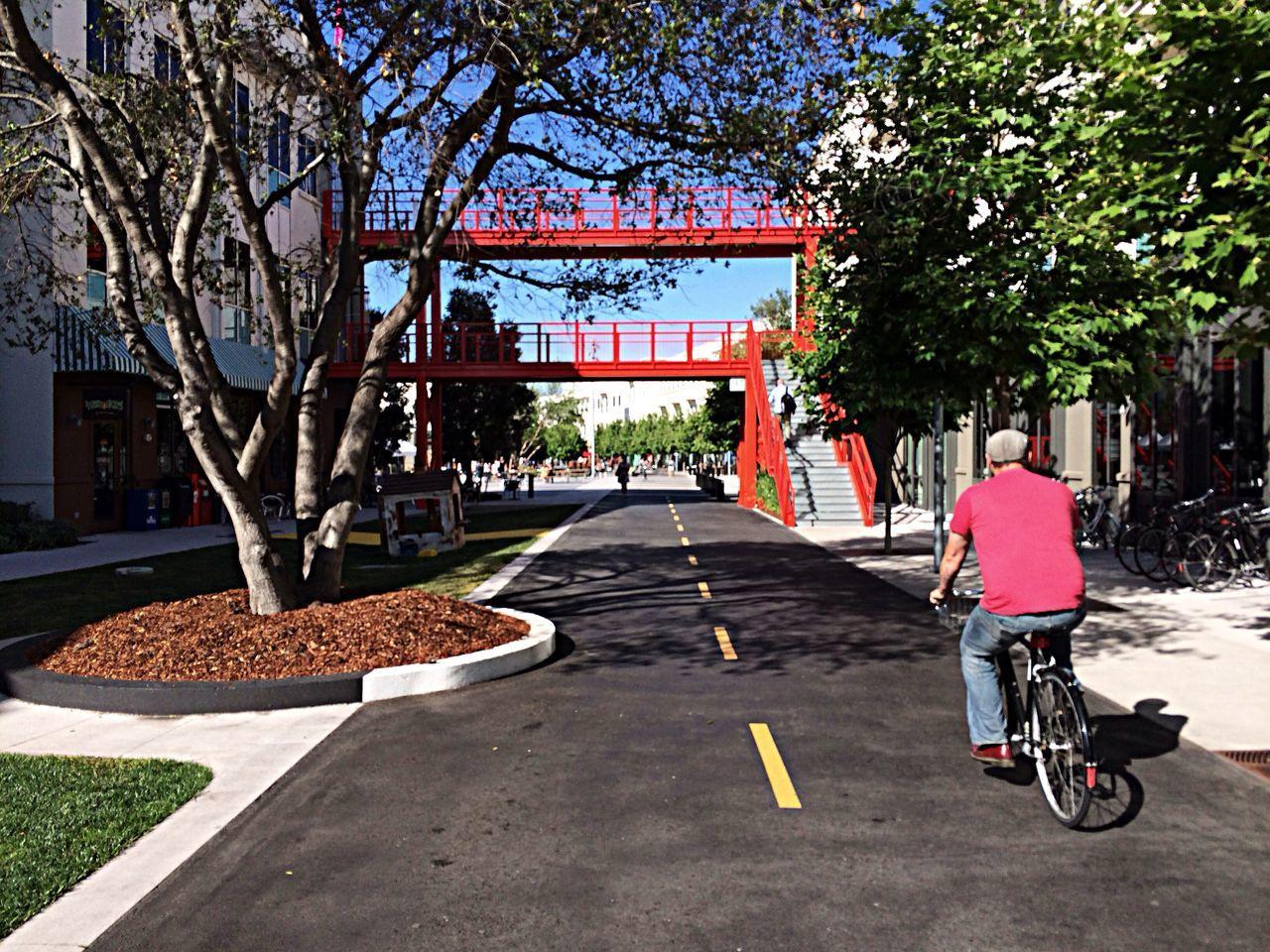 Beautiful stock photos of sunny, Alternative, Bicycle, Bike, City Life
