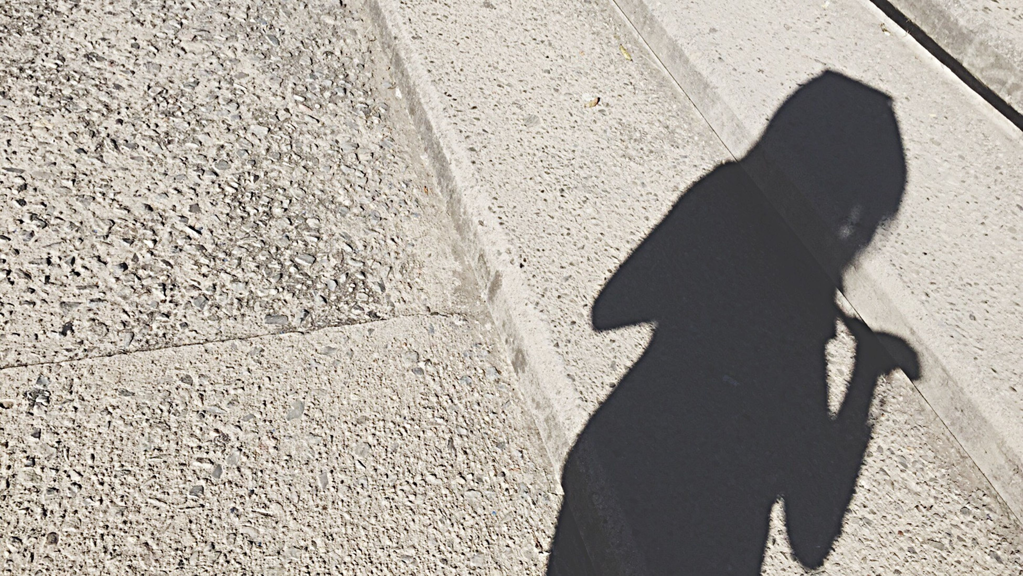 shadow, high angle view, street, sunlight, lifestyles, walking, standing, leisure activity, low section, day, men, focus on shadow, sidewalk, outdoors, person, unrecognizable person, road