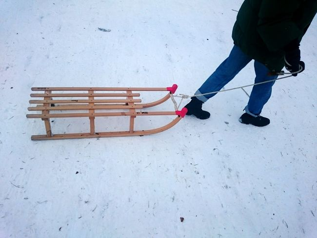 Sledding Winter Sport