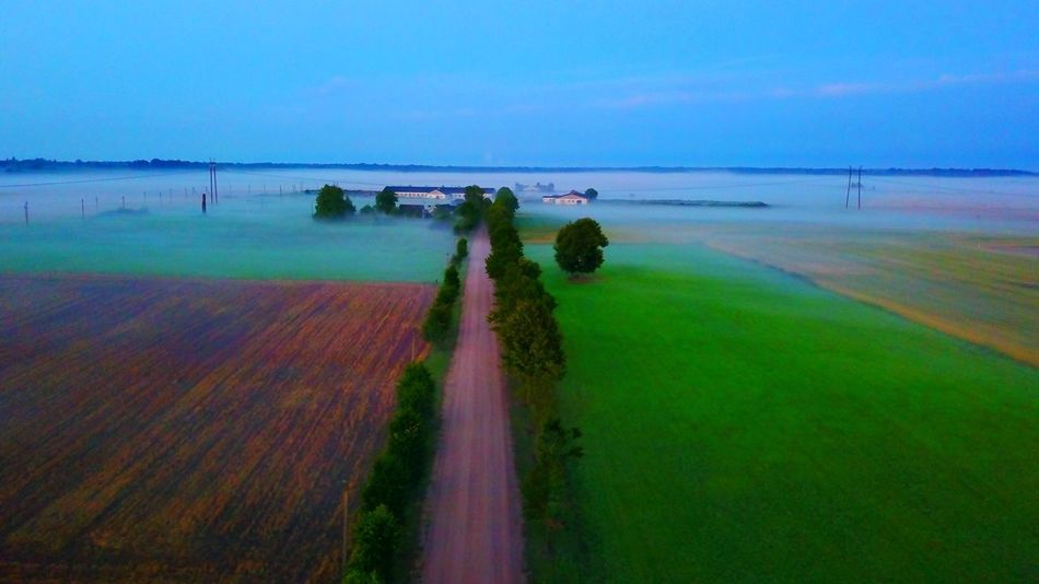Road Water Scenics Sea Beauty In Nature Nature Tranquil Scene Outdoors Landscape Sky Horizon Over Water Day Tranquility Real People Beach Grass