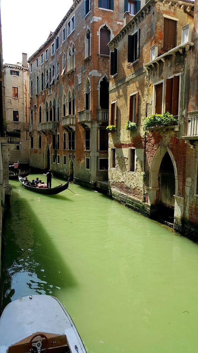 Bridge Venezia Water Canal Venice Street Building Boat Boats Italy Gondolas Gondole In Venice Gondola