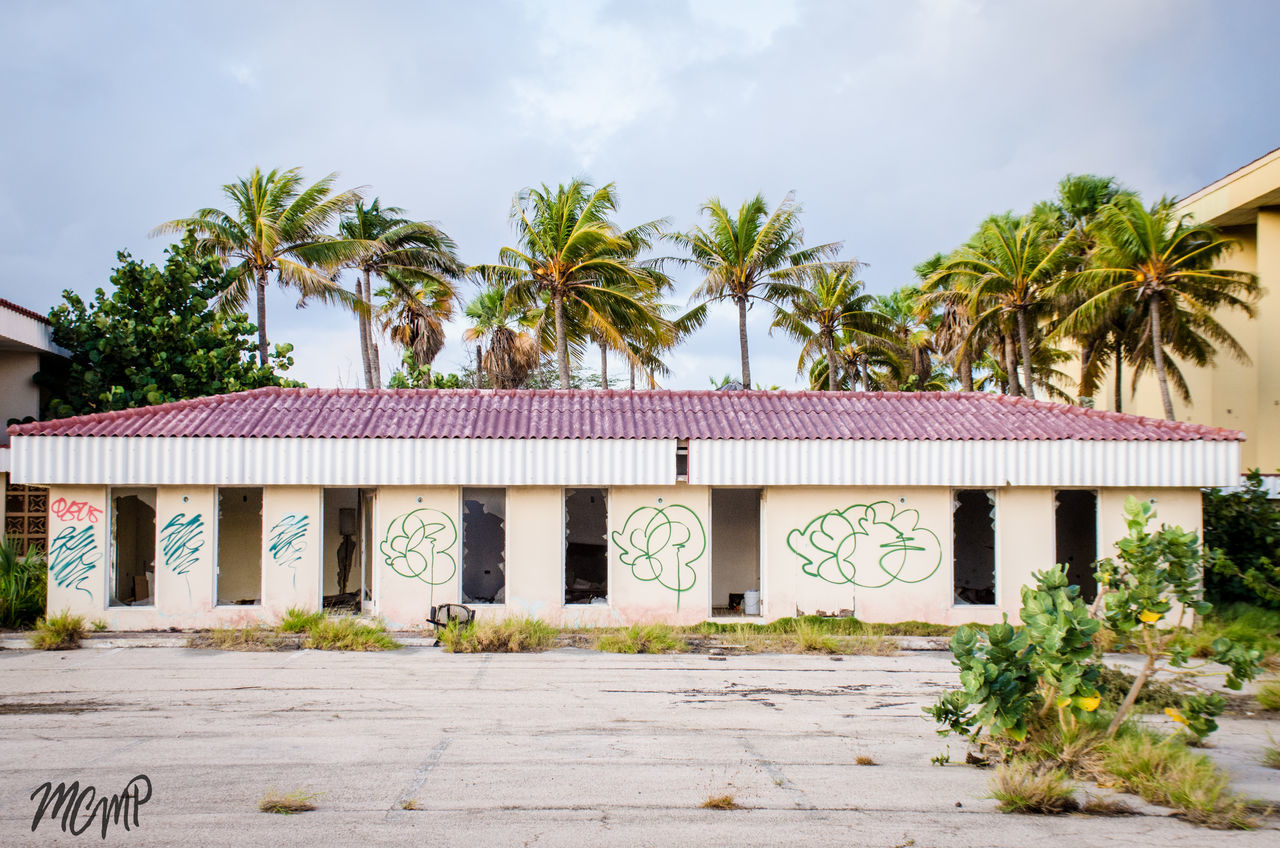 Abandon_seekers Abandoned Buildings Abandoned Places Architecture Beauty Of Decay Building Exterior Built Structure Day Decay Decaying Building Growth House No People Outdoors Palm Tree Palm Tree Sky Tree Urbanphotography Urbexphotography