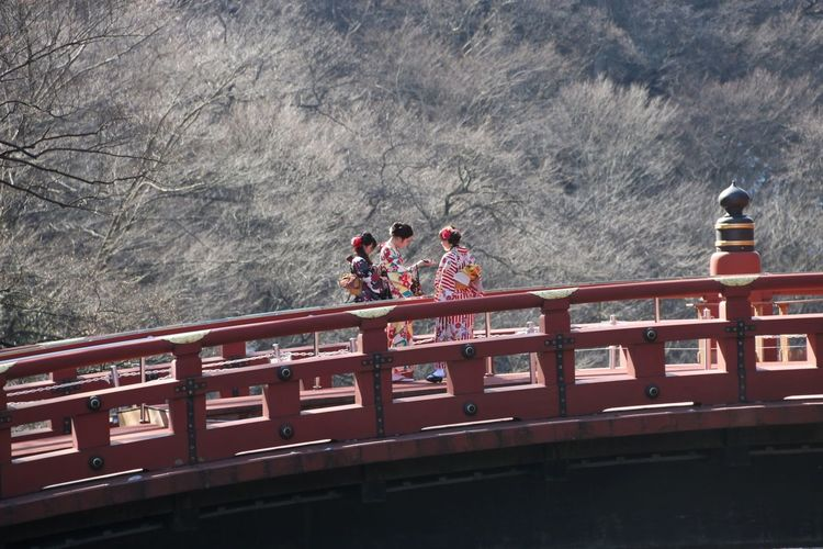 Red Outdoors Day Water Nature People Adults Only Adult Kimono Kimono Girl Women Female Group Of People Culture Japan Japanese  Bridge Red Bridge Nikko