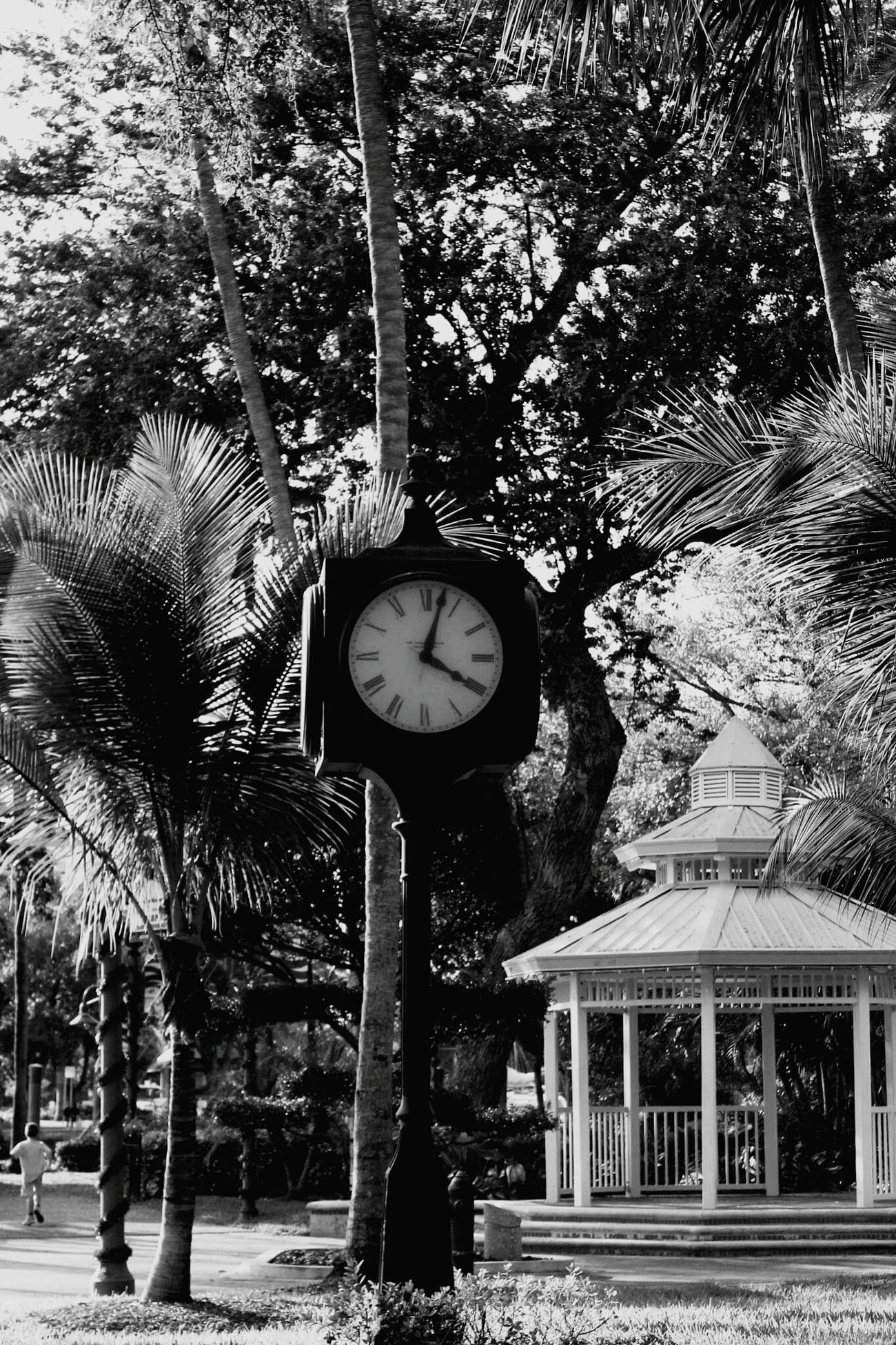 Come out on upon my seas, Cursed missed opportunities, Am I a part of the cure, Or am I part of the disease, Singing... City Clocks Streetphoto_bw Ft Lauderdale