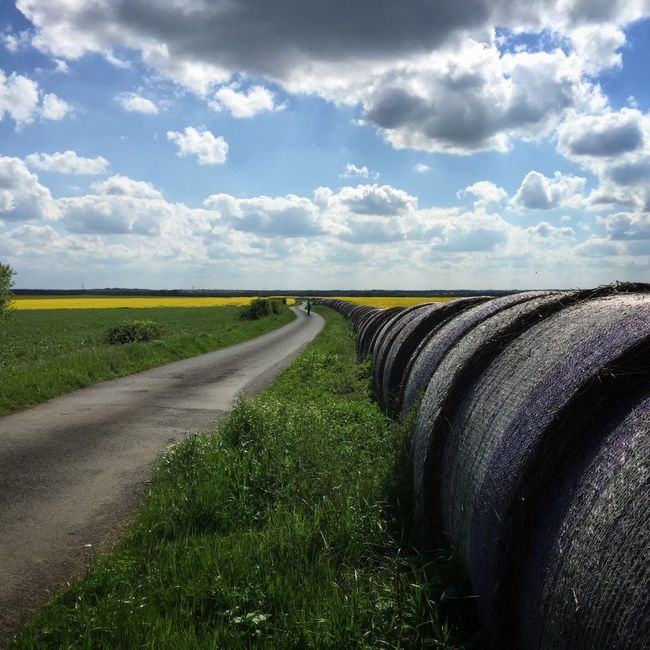 Agriculture Beauty In Nature Cloud Cloud - Sky Cloudy Country Road Day Diminishing Perspective Dirt Road Field Grass Horizon Over Land Landscape Nature No People Non-urban Scene Outdoors Road Rural Scene Scenics Sky The Way Forward Tranquil Scene Tranquility Vanishing Point