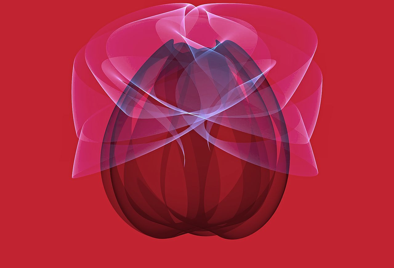 the tulip and the rose, 3d illustration on a red blackground 3D 3D Art Abstract Close-up Colored Background Futuristic Illustration Illustrationart No People Red Red Color Rose - Flower Roses Shape Styled Stylized Tulip