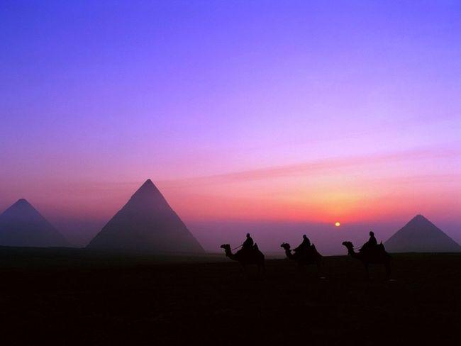 Bir hayalim var belki gerçekleşir yada gerçekleşmez ama mısırda soğuk gecenin ortasında dolunay altında piramitler e karşı kitap okumak belki o zaman huzuru bulabileceğim