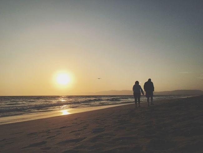 Up for a walk? Enjoying The Sun Beach Silhouette Sunset Silhouettes Sunset_collection Beach Photography Enjoying The View Ocean