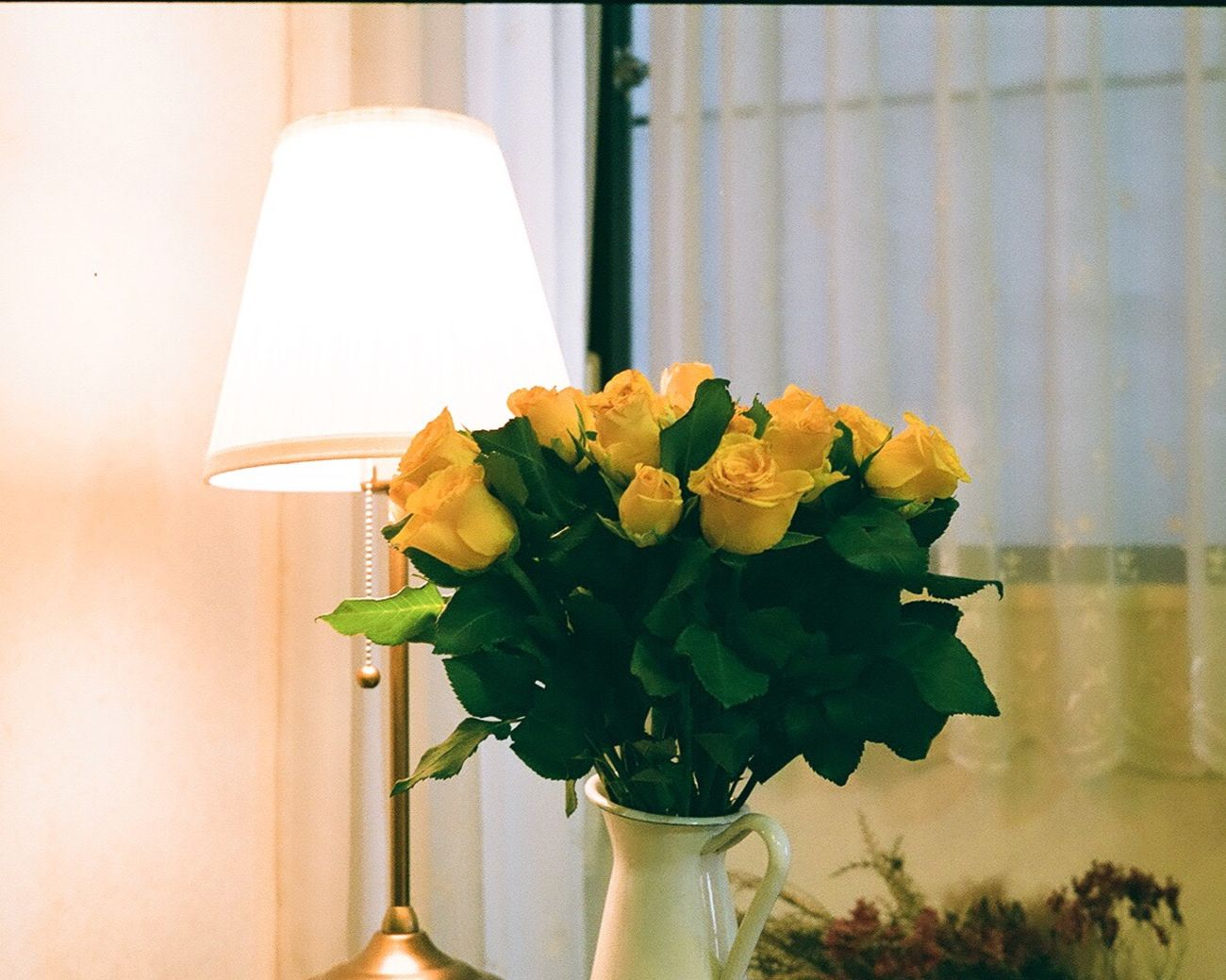 Great to have roses in a living room. Flower Fragility Freshness Nature Yellow Plant Petal Leaf Beauty In Nature Indoors  No People Close-up Flower Head Day Yellow Flower Yellow Roses Roses Living Room Filmcamera Olympus 35dc 35DC