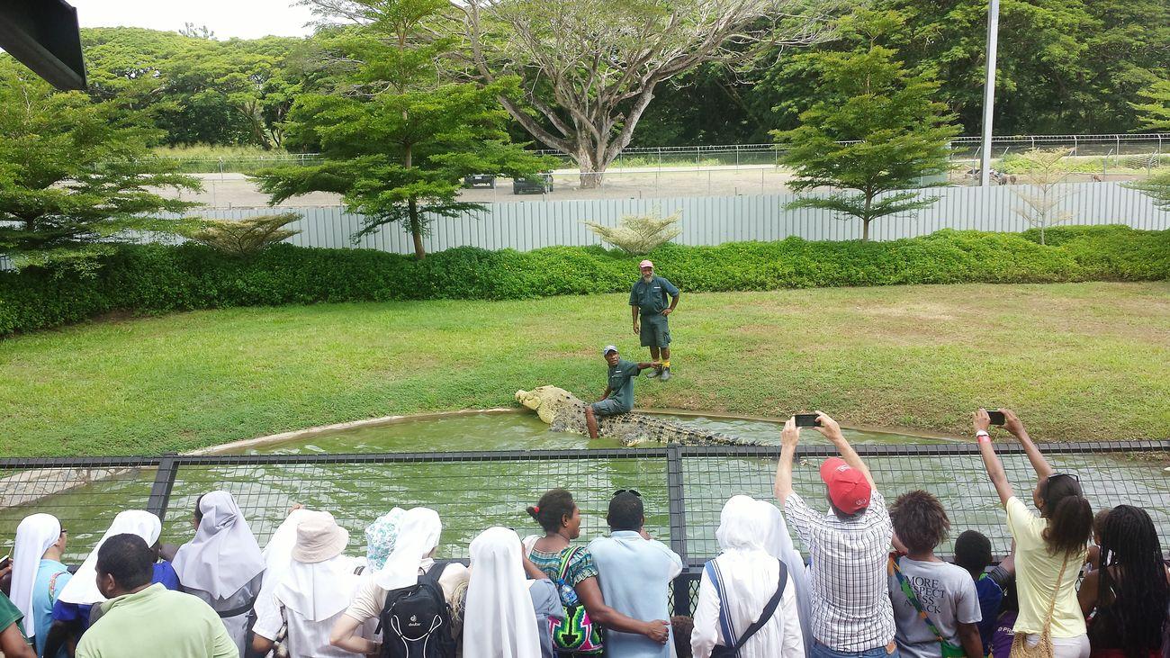 Pukpuk😄 Crocodile Crocodile Dunde Adventure Park Surreal Amazing Nature Brave Man Spectecular