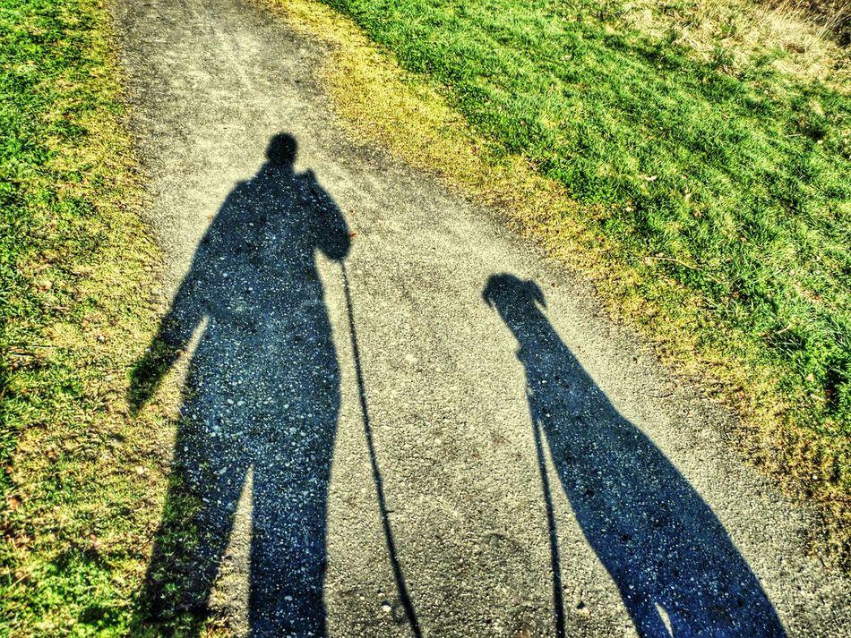 Walking The Dog ShadowSelfie Dog❤ PostcodeRM15 Belhus South Ockendon Spring American Bulldog Belhus Woods Country Park By Leesa Morris