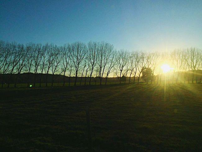 """Magico sur "" Şūr Chile Frutillar  Live Drive (null) Sun Beauty In Nature Artist Photo"