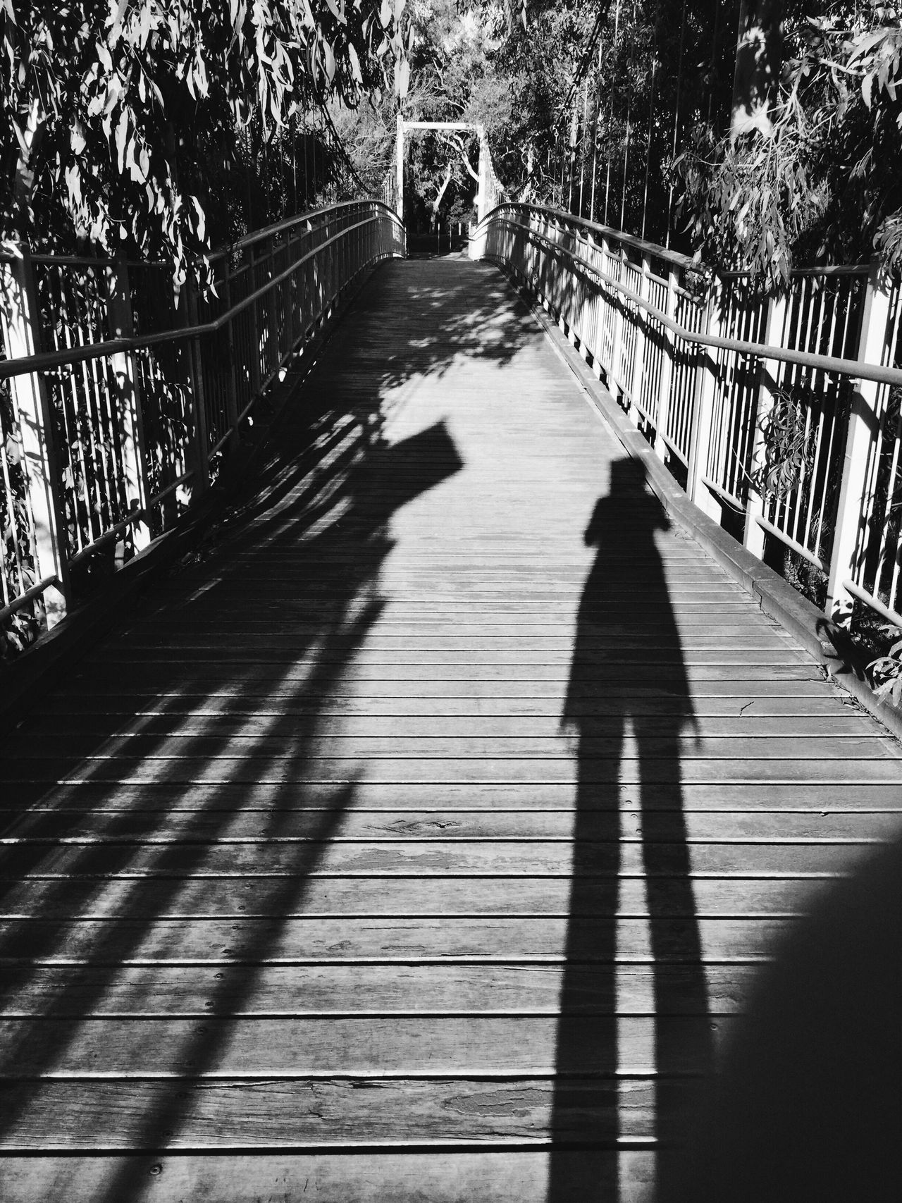 That's Me My Shadow Me And My Shadow No People Black And White Black And White Photography Taking Photos On A Bridge