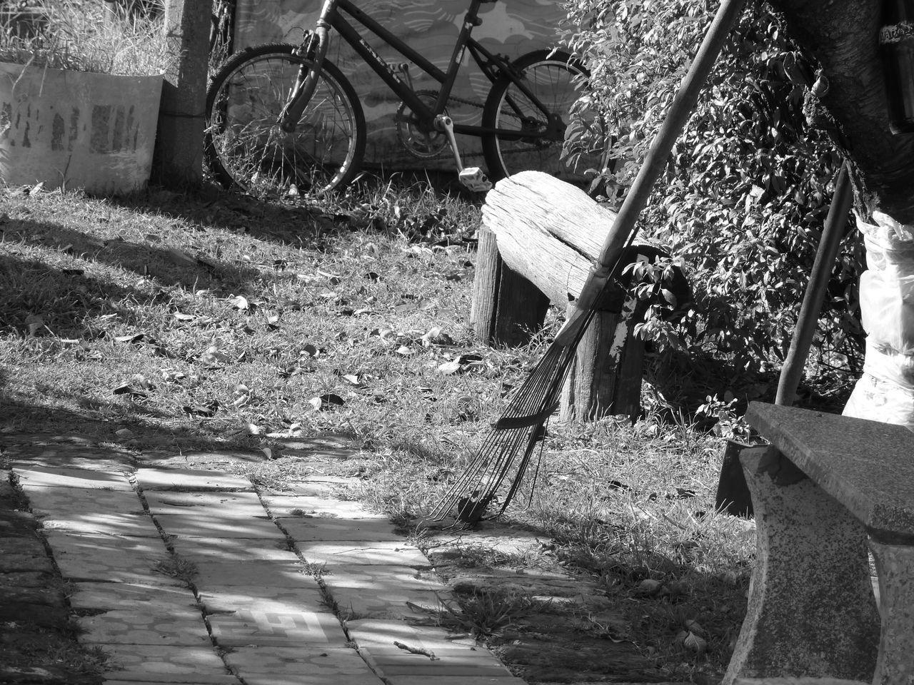 Jardin Otoño First Eyeem Photo