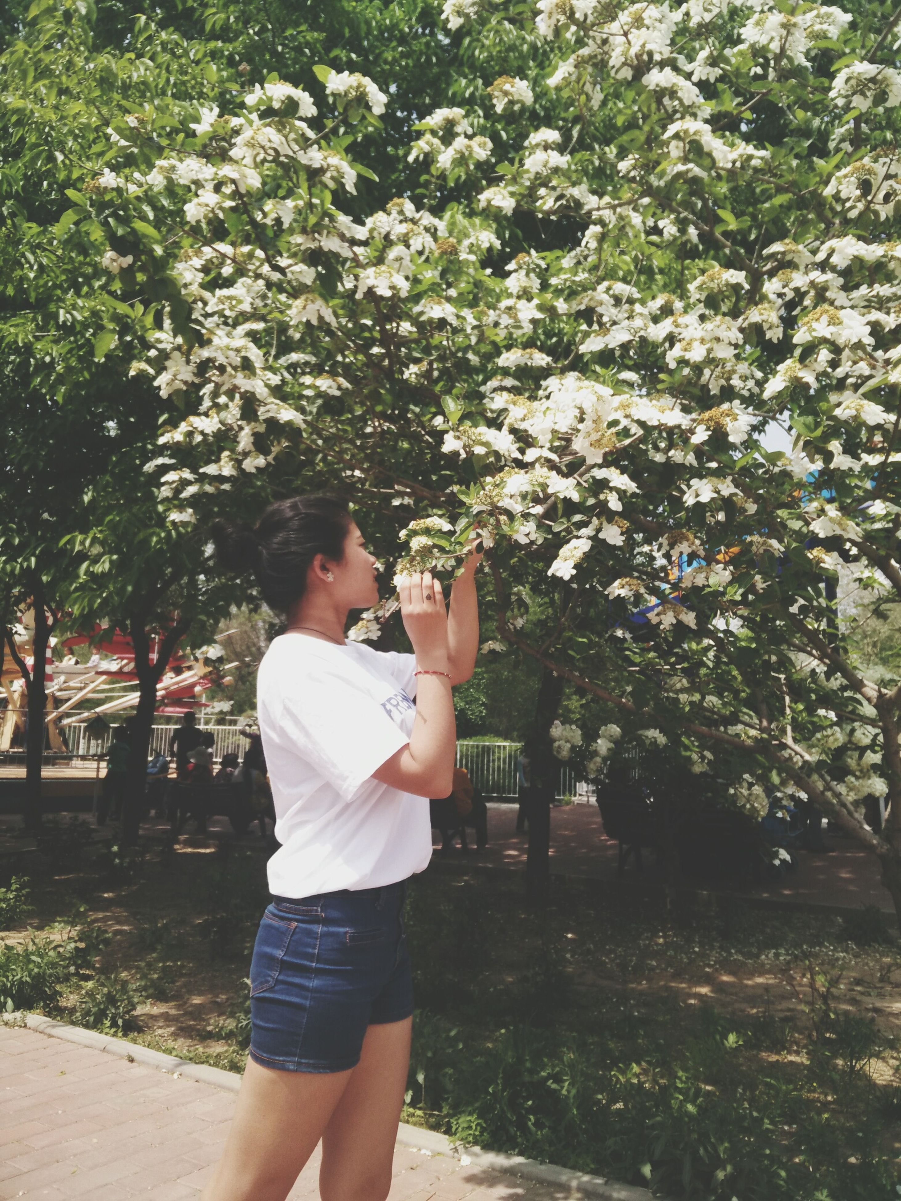lifestyles, person, tree, casual clothing, leisure activity, park - man made space, flower, young adult, standing, growth, full length, young women, three quarter length, childhood, holding, elementary age, girls, front view