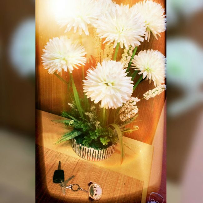 Luvy Flower Sweet Present Pretty N Memorable Moment Cool Luvley I Luv It Car Key Dimony Bear Gift Form Luv