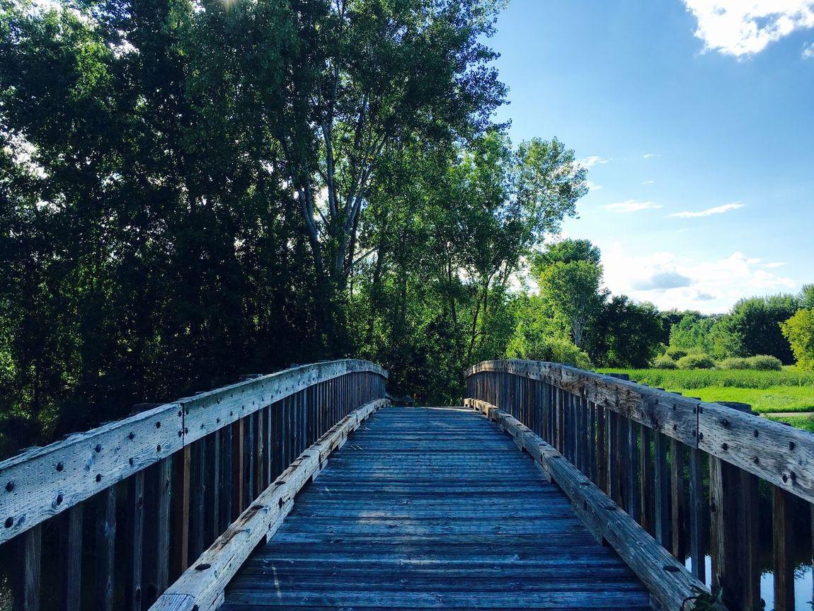 Wooden Bridge Bridge Bridge Collection