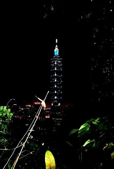 Illuminated Tower Tree Night Travel Destinations No People City Nature Outdoors Taipei 101 At Night Exercise Taipei 101 Architecture