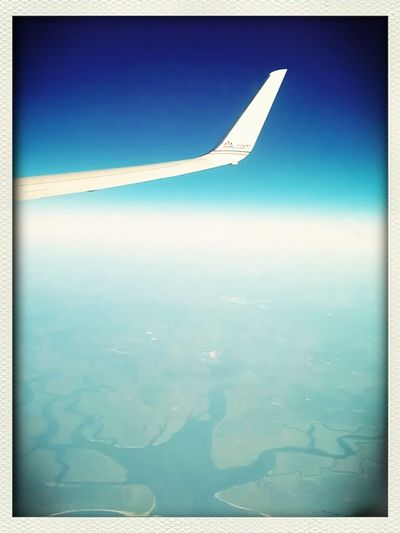 Wing pics don't go out of style!