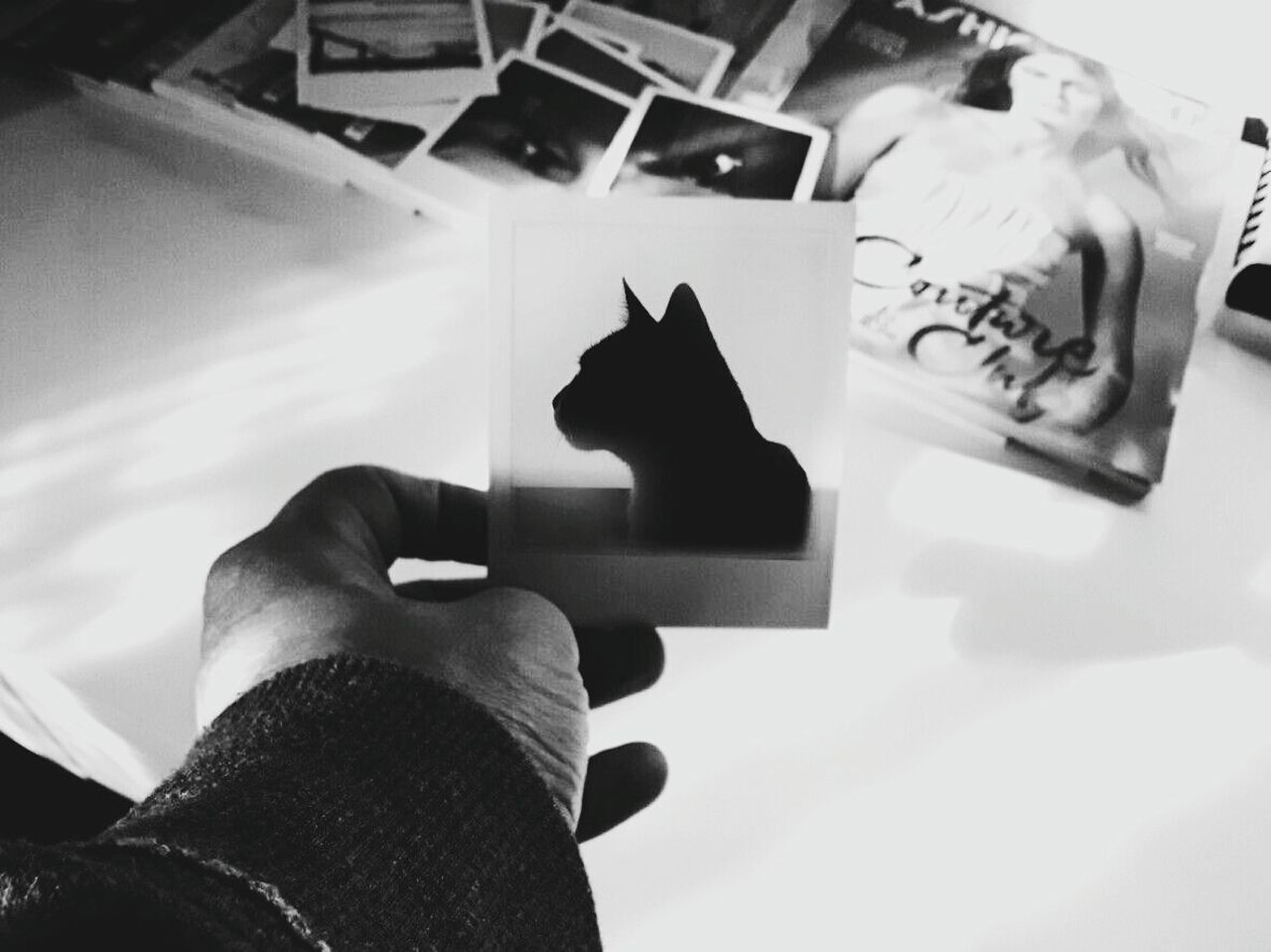 instant black and withe Indoors  Close-up Polaroid Photography MyArt Shadows Mypet Blackandwhite
