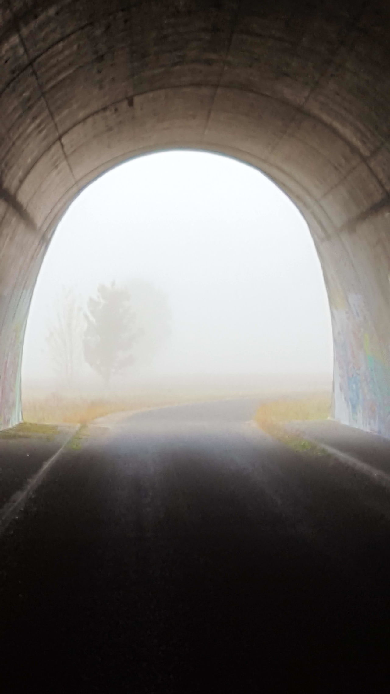 Vertical Transportation Arch Window Tunnel Built Structure Road Day Indoors  Cloud - Sky Sky Architecture Bridge - Man Made Structure Nature No People Fog Popular From My Point Of View Mobilephotography Getting Inspired Beauty In Nature Eye4photography  Landscape_photography Way To Nowhere Silhouette