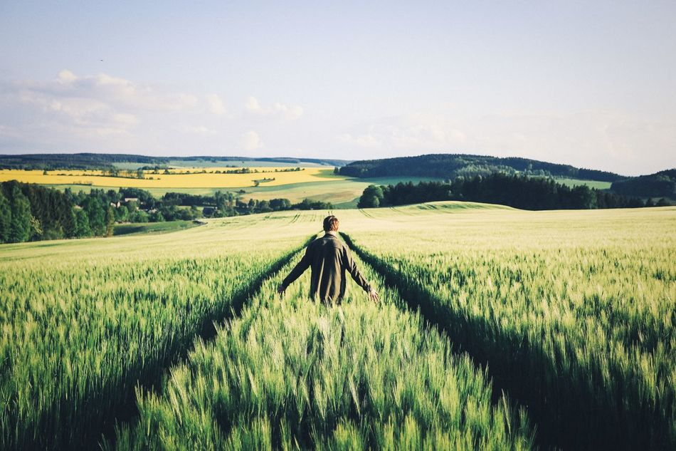 Beautiful stock photos of thanksgiving, Countryside, Day, Escapism, Farm