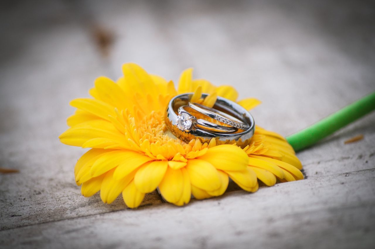 Wedding Rings Flower Daisy