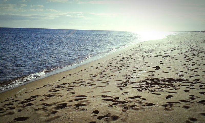 Natale al mare Taking Photos Beach Sea Christmas At The Beach Relaxing Sunshine Sun Light Natale Al Mare