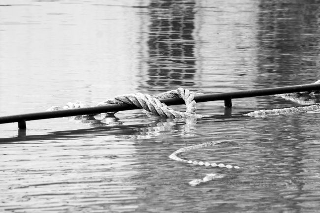 Water Nature Outdoors River Flood Blackandwhite Black And White Photography Black And White Rope Floating