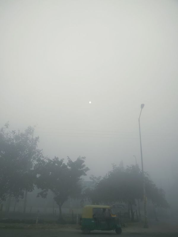 It's Cold Outside Winter Chillyweather  Foggy Morning College Campus Auto Coldsun Sun Amateur Photographer EyeEm Photographylover Oneplustwo Oneplusphotography Eye4photography  Eyeemphotography Follow4follow The Street Photographer - 2017 EyeEm Awards