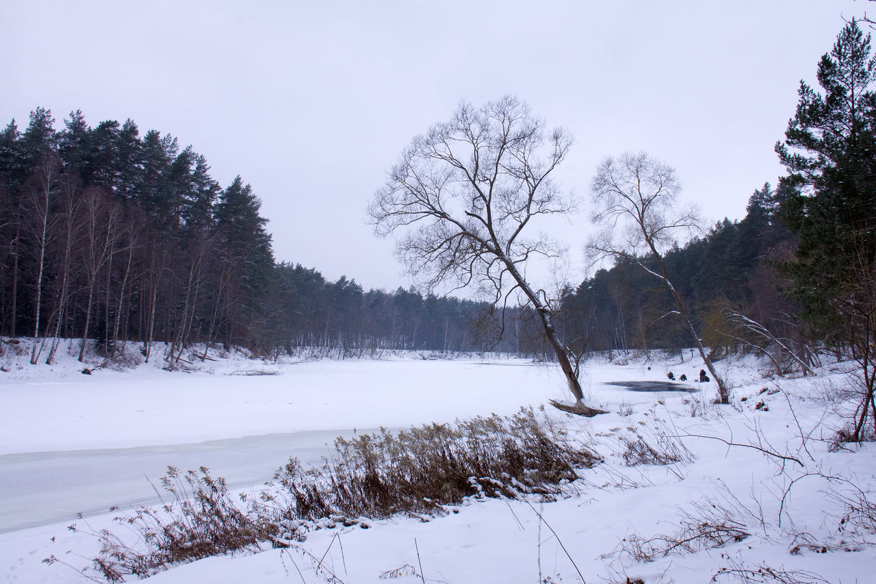 Banks Beauty In Nature Cold Temperature Day Fishertmen Forest Forest Photography Grass Herbs Landscape Lithuania Nature Neris Outdoors River Sky Small Figures Snow Tranquility Tree Winter Wood