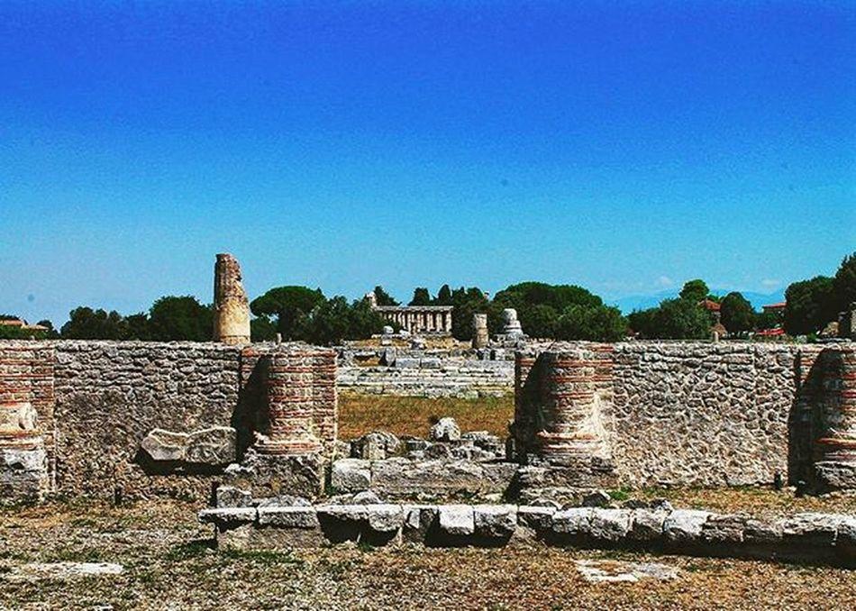 Paestum archaeological park in Salerno, Italy.. Italy Paestum Italia Salerno Ancientrome Roman SPQR