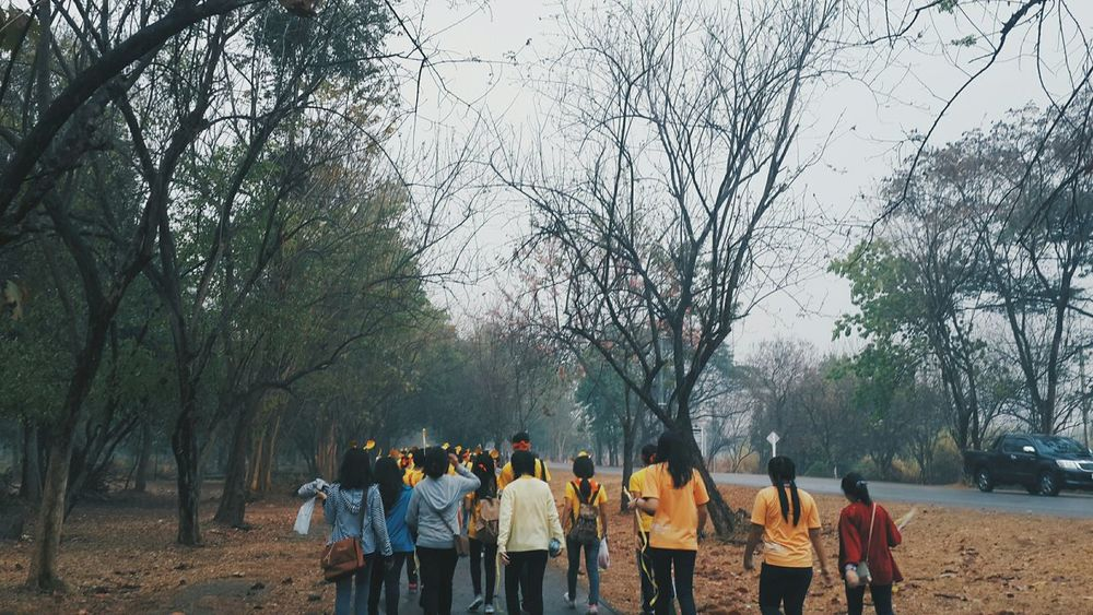 Forest Walking Around Friends Ed Kku YouWillNeverWalkAlone Sportday Facultyofeducation Morning Beforetherain