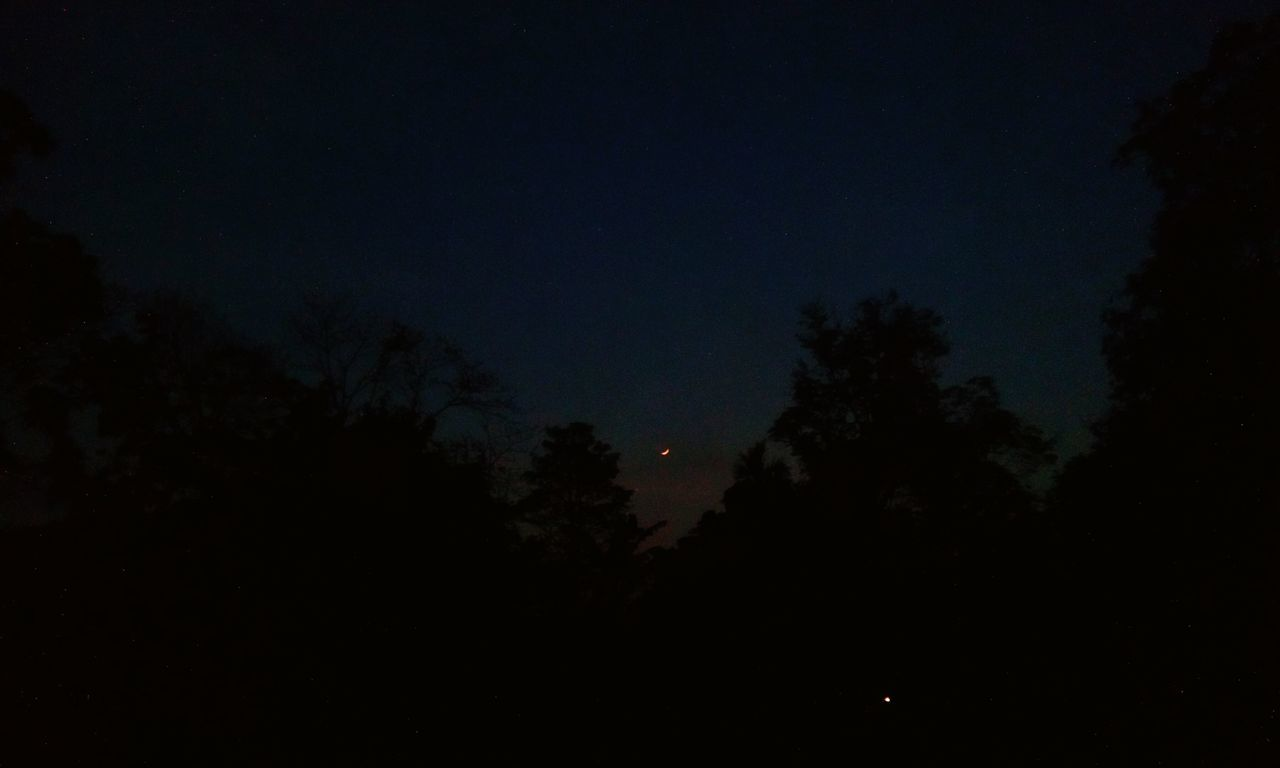 night, dark, nature, moon, silhouette, tranquility, beauty in nature, no people, sky, scenics, tree, astronomy, outdoors