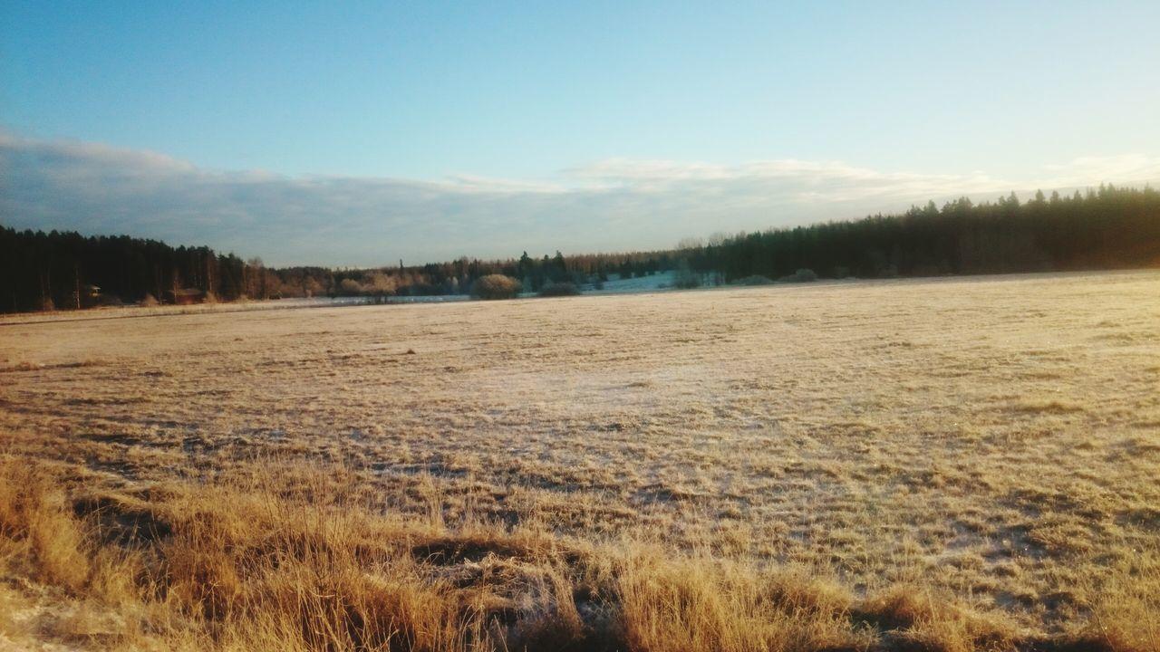 Beautiful stock photos of guten morgen, tranquil scene, scenics, landscape, tranquility