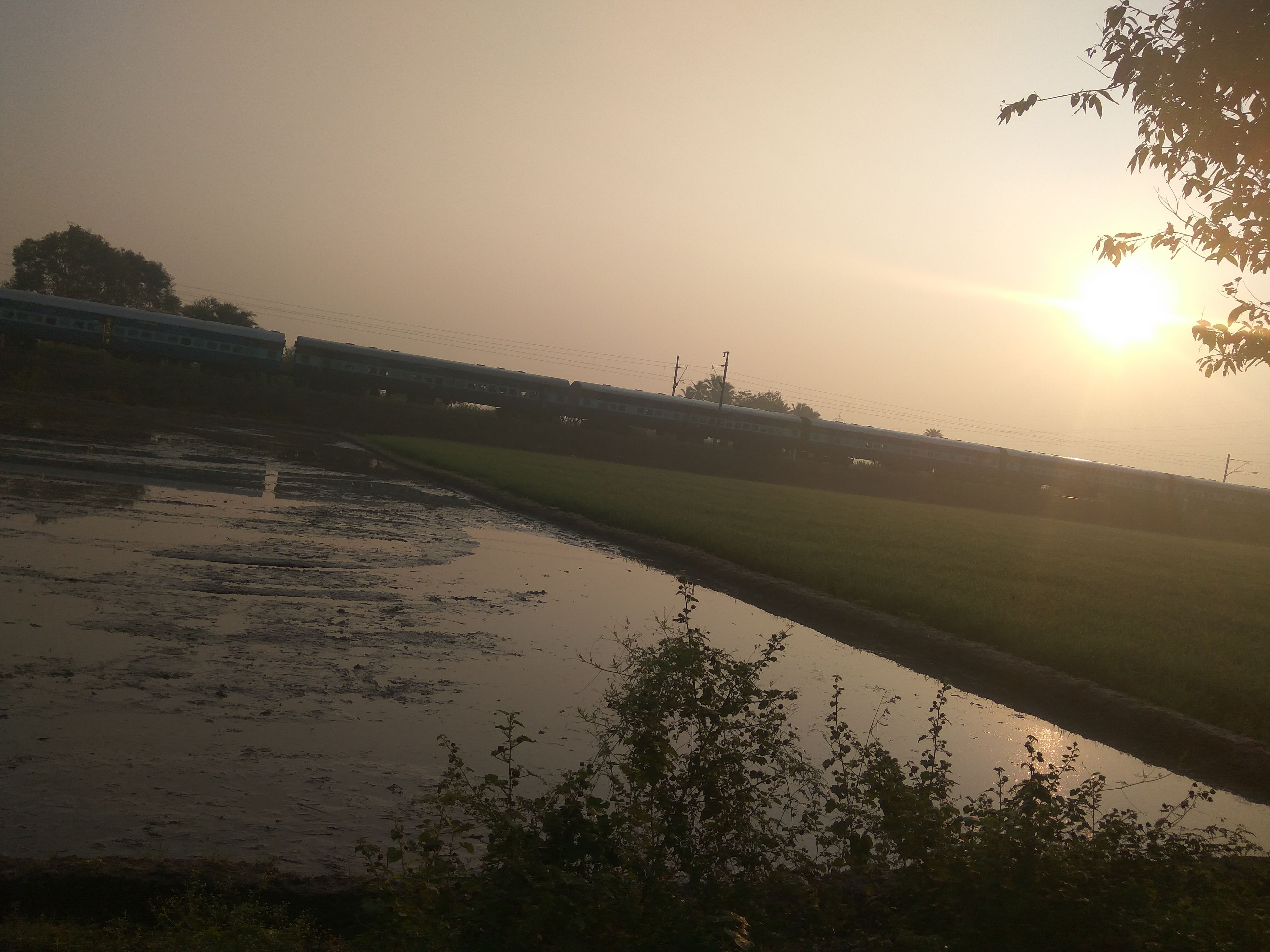 sunset, outdoors, agriculture, beauty in nature, sky, nature, landscape, scenics, rice paddy, sun, tree, water, people, day, golf course