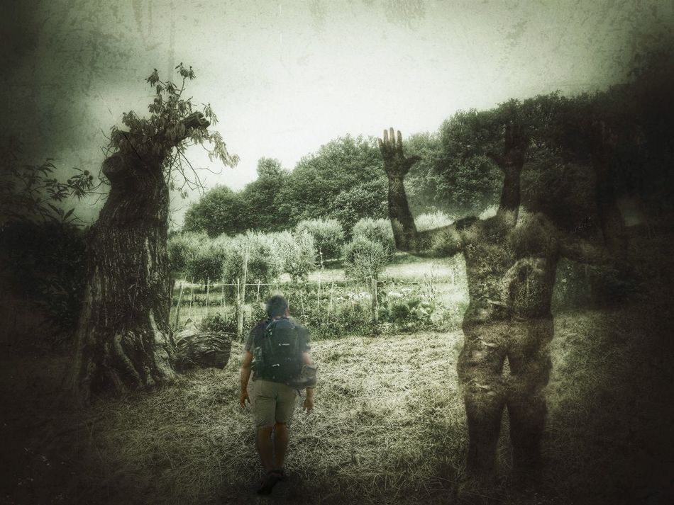 Protecting Where We Play Painting Dark Art Dark Photography Dark Edit The Dark Forest Walking Light And Shadow IPhoneography CreativePhotographer
