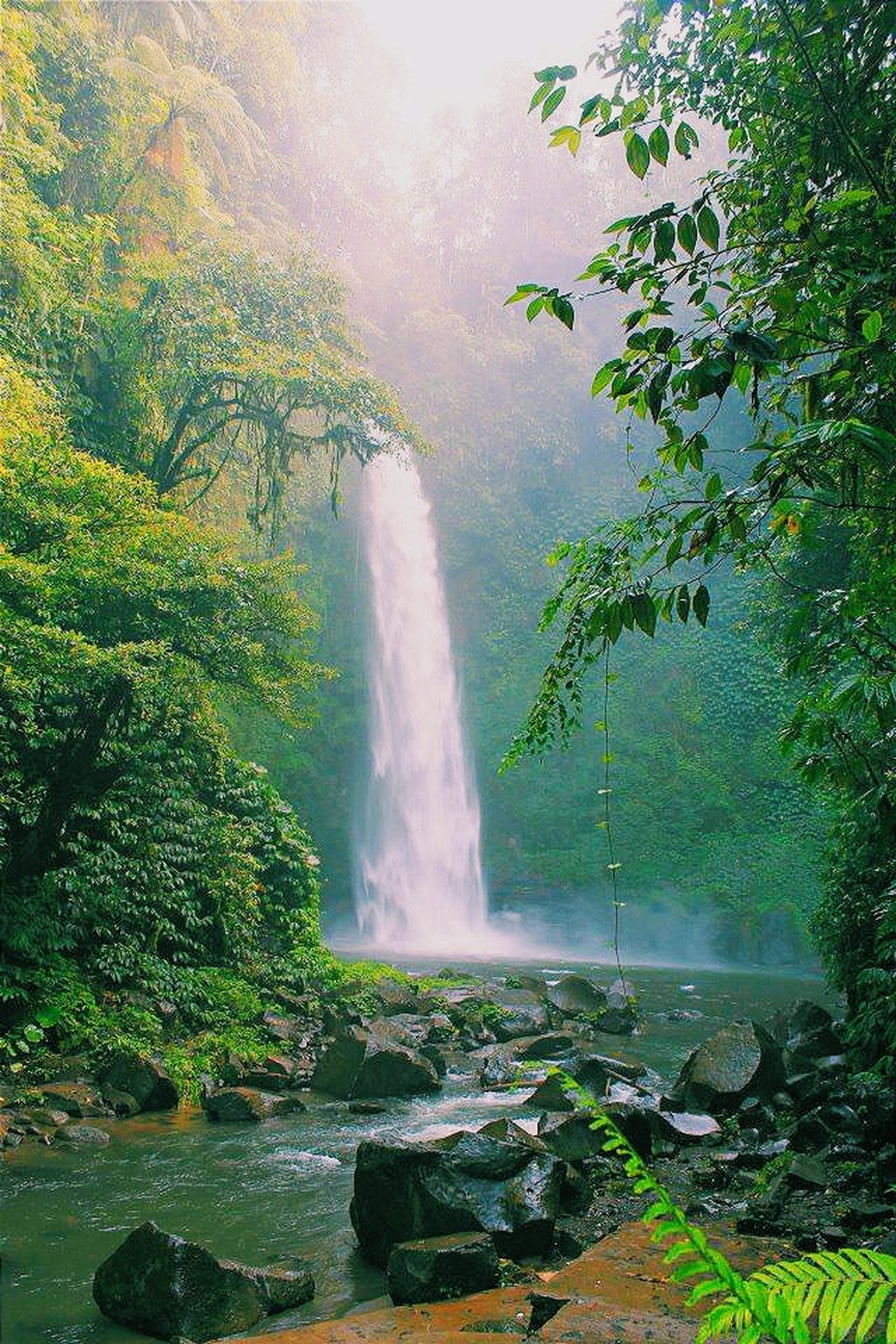 wooahhh... Amazing Waterfall in Bali I Love BALI Beautiful Place EyeEm Indonesia Eye For Photography EyeEm Nature Lover My Trip My Adventure
