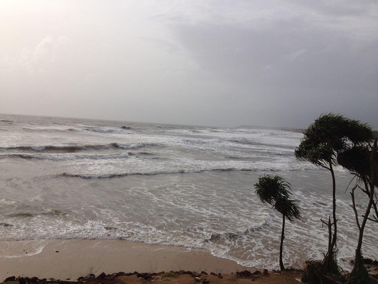 Beach Beauty In Nature Calm Cloud - Sky Horizon Over Water Palm Tree Sea Wave
