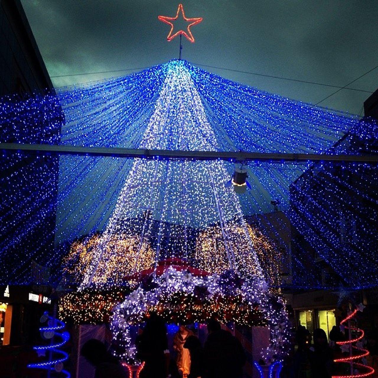 . 어두운 하늘에 밝은트리~ 일상 크리스마스트리 크리스마스트리축제