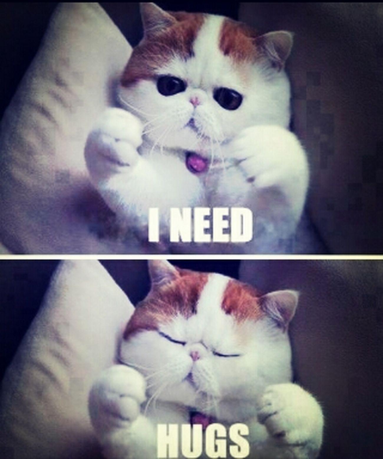 I Want A Hugs :(
