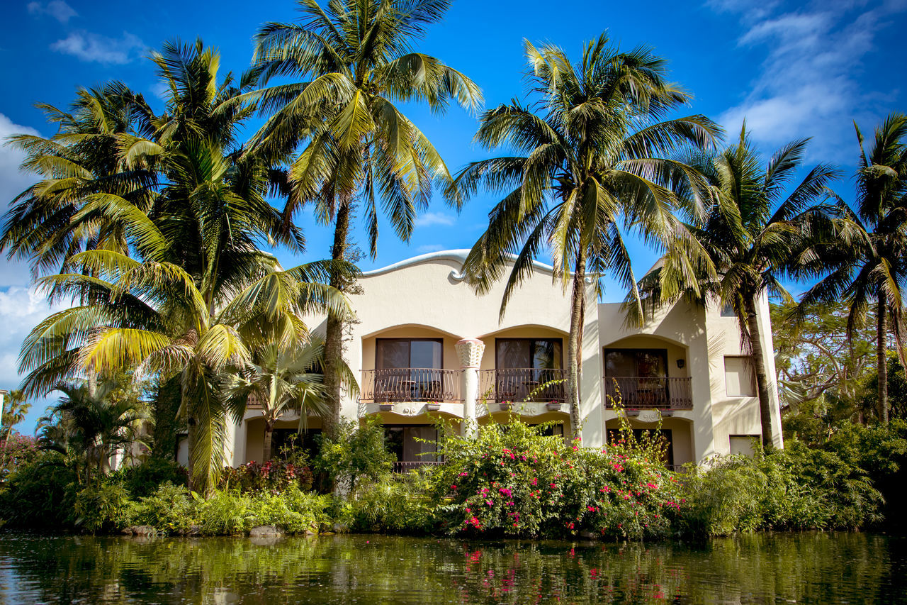 Architecture Building Exterior Built Structure Day Growth No People Outdoors Palm Tree River Sky Travel Destinations Tree Vacation