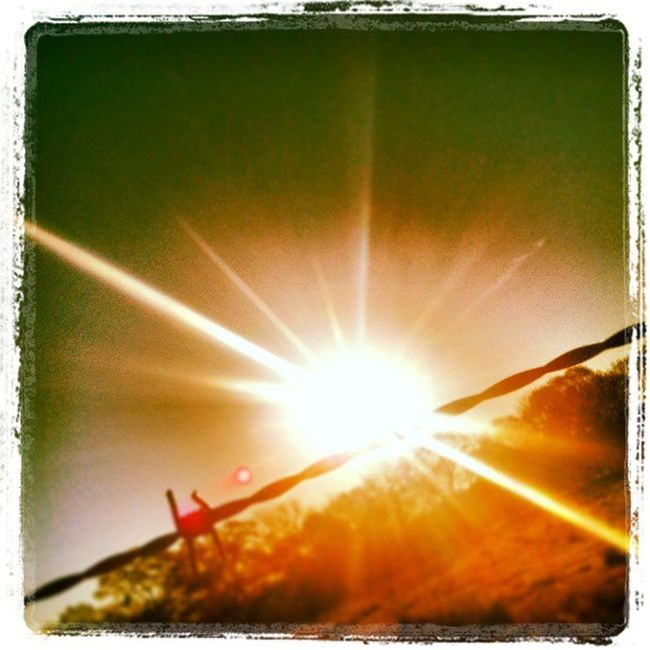 Heller  Followme Follow4follow Like4like LoveMe Heygirlhey Beautifulday Beautiful Barbedwirefence Sunrise Newbeginning Freshstart Warm Love Lovemylife Country Gaycountryboy Happy Imperfectlyperfect Morning Walk Jog Healthy