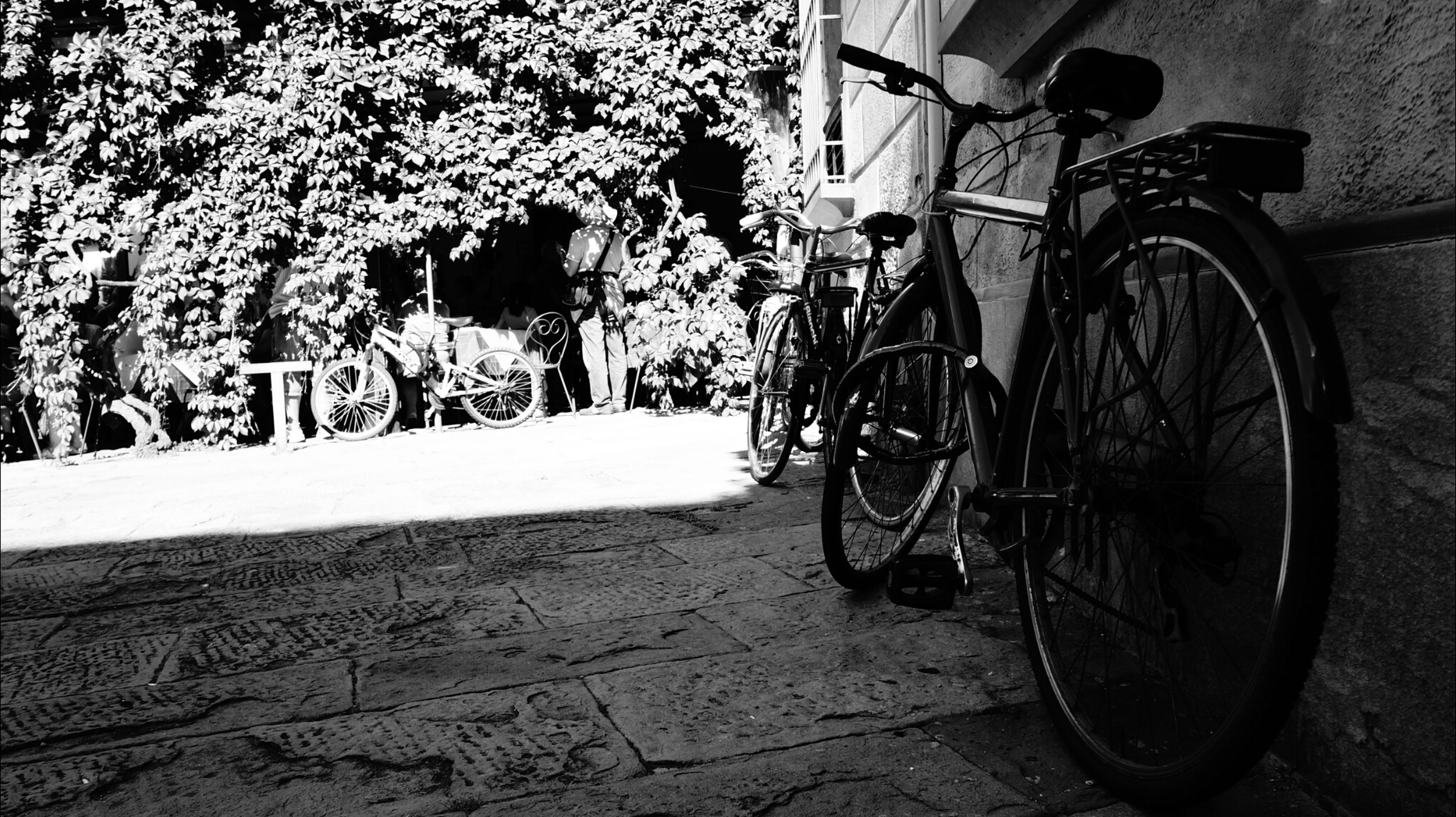 bicycle, transportation, mode of transport, land vehicle, parked, stationary, parking, wheel, wall - building feature, wall, street, shadow, day, outdoors, no people, sunlight, built structure, absence, plant, sidewalk