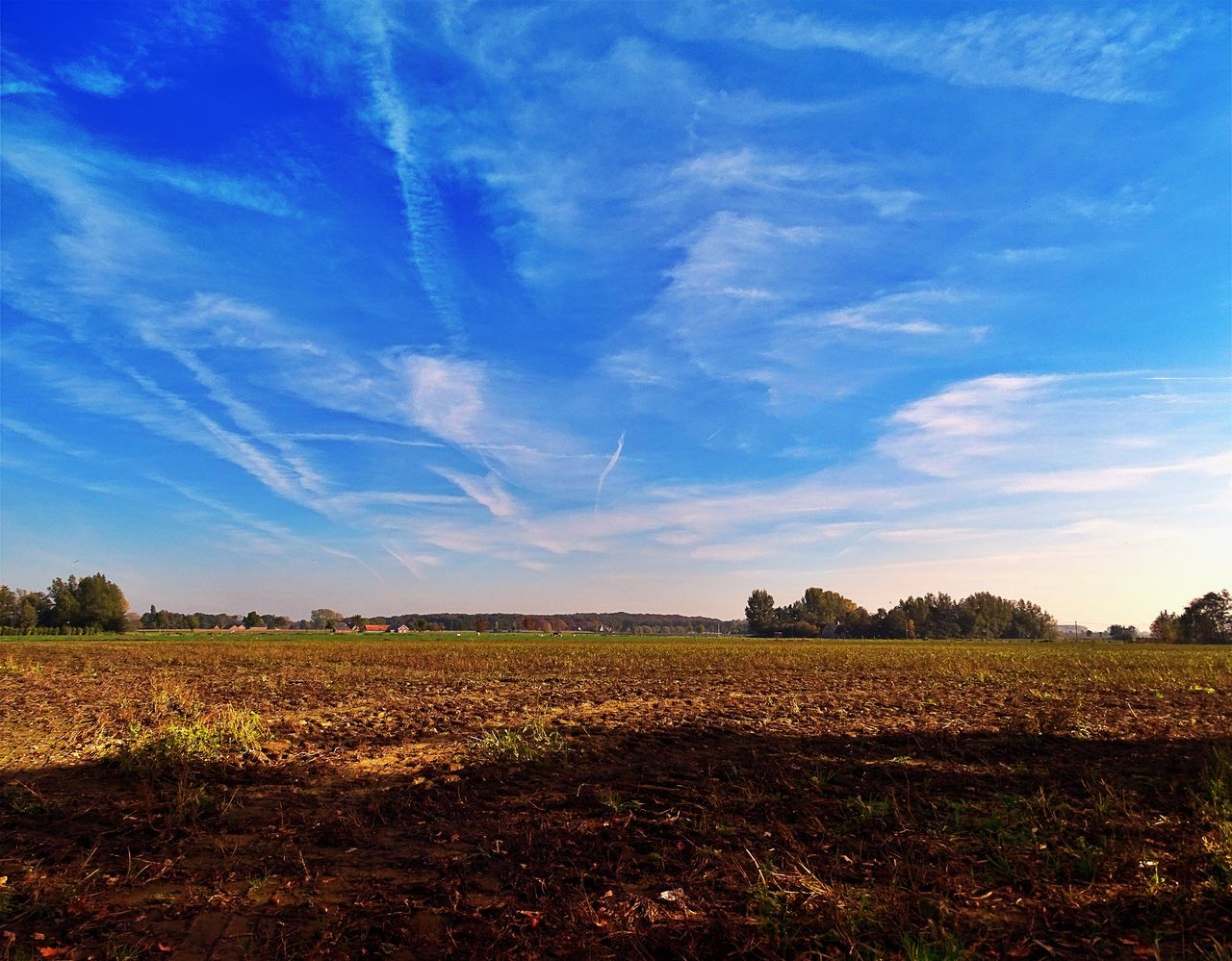 Agricultural Field Against Blue Sky