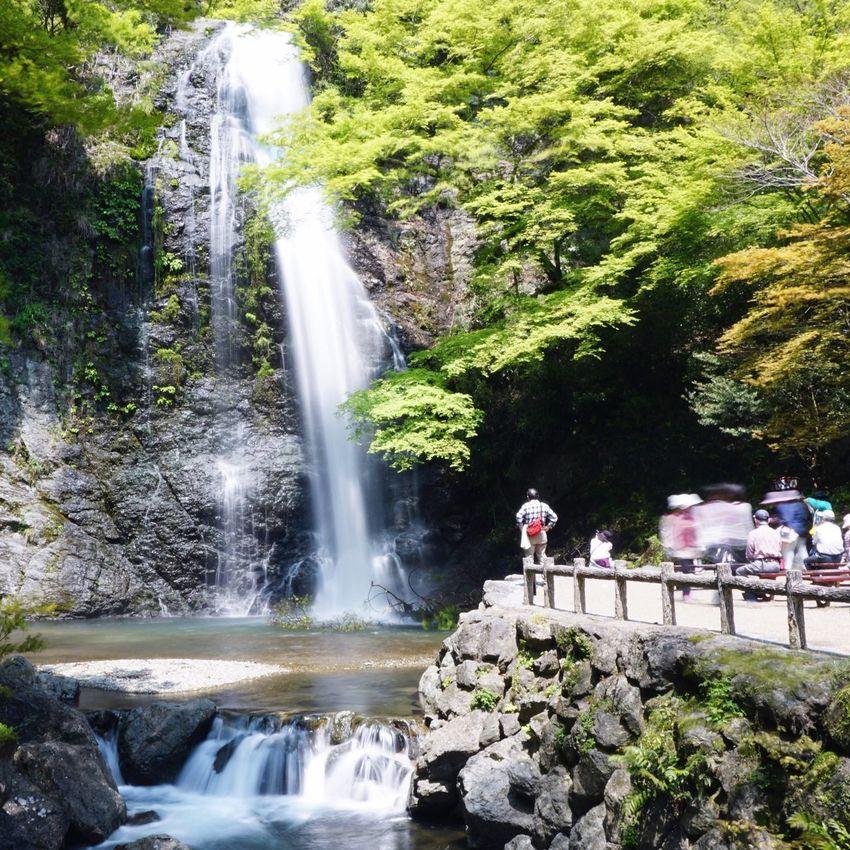 Waterfall 箕面 滝 Japan Relaxing Eye4photography  Relaxing OSAKA Sony A6000